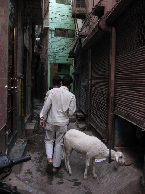 streets of darya ganj